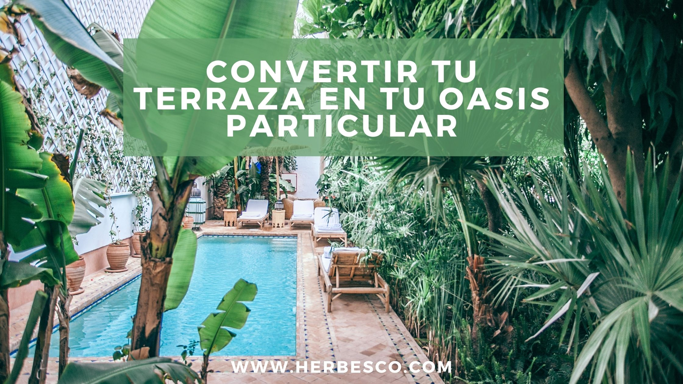 convertir-tu-terraza-en-tu-oasis-particular-1